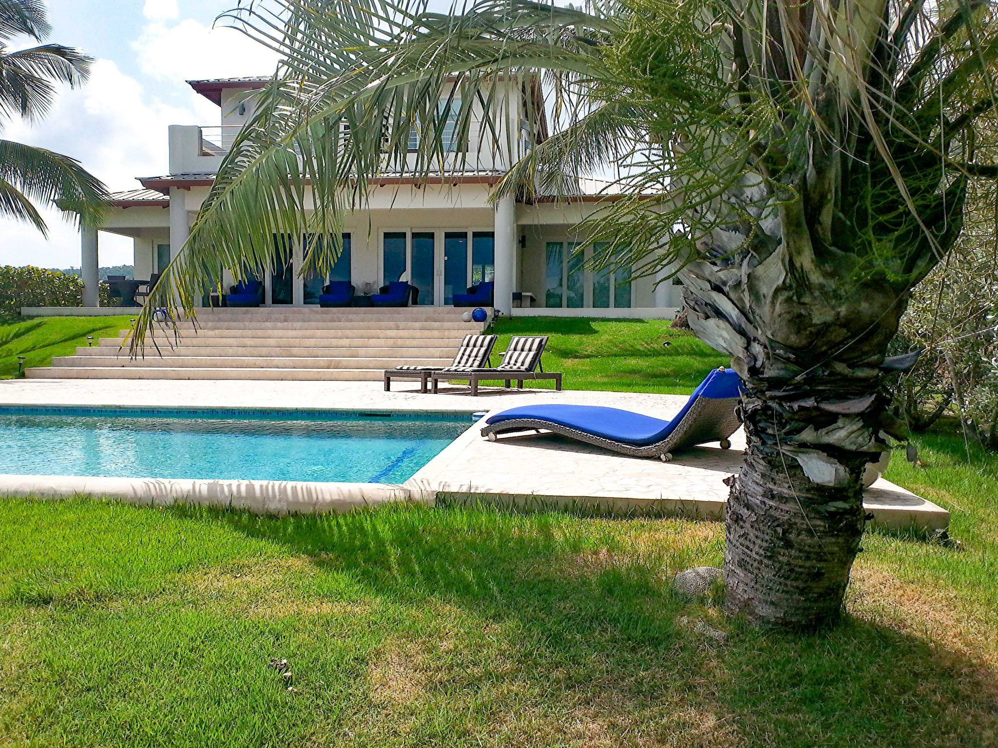 house-pool-and-palm